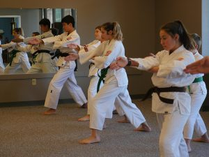 Overland Park Karate Kids Spear Hand